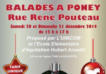 Balades à Poney, rue René Pouteau les 20 et 21 décembre