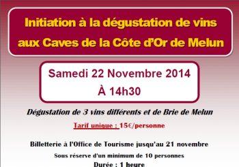 Aux caves de la Côte d'Or : dégustation de 3 vins et de brie de Melun
